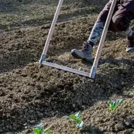 Lavorazioni del suolo